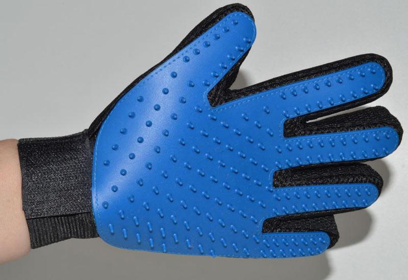 Kék kutya fésű kesztyű és masszírozó 1