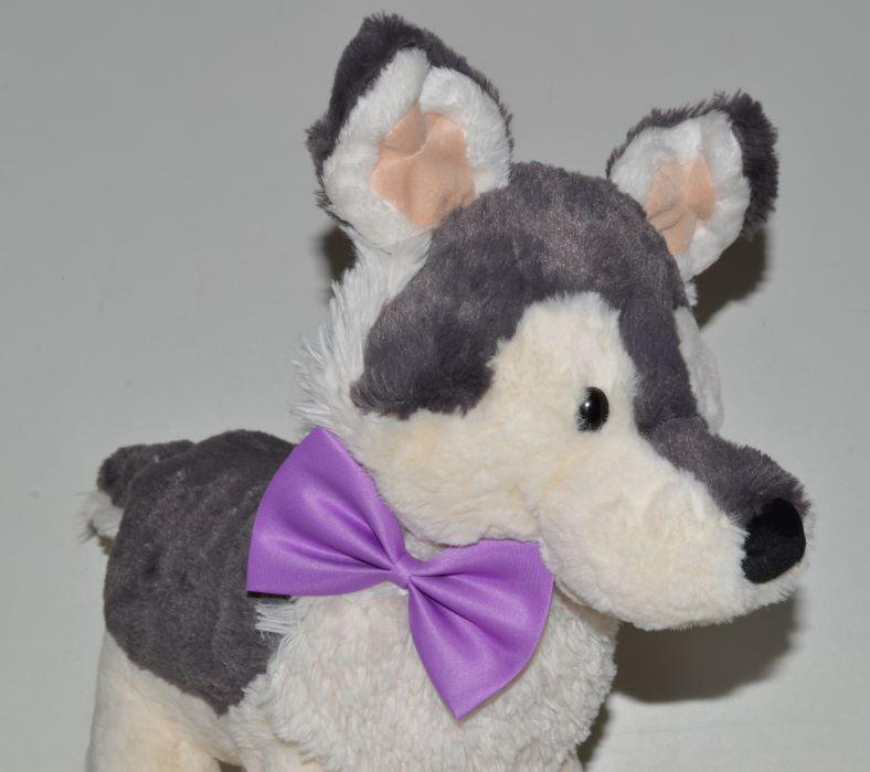 Lila kutya csokornyakkendő 1
