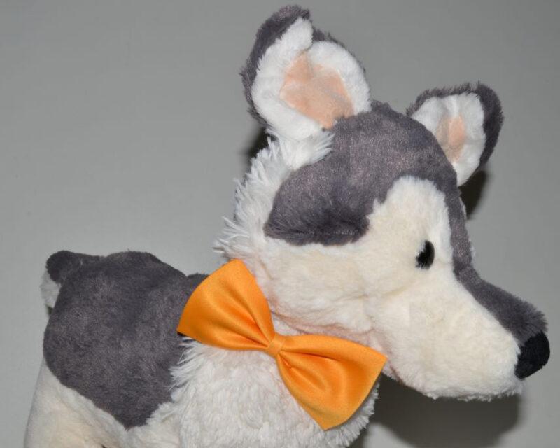 Narancs kutya csokornyakkendő 1