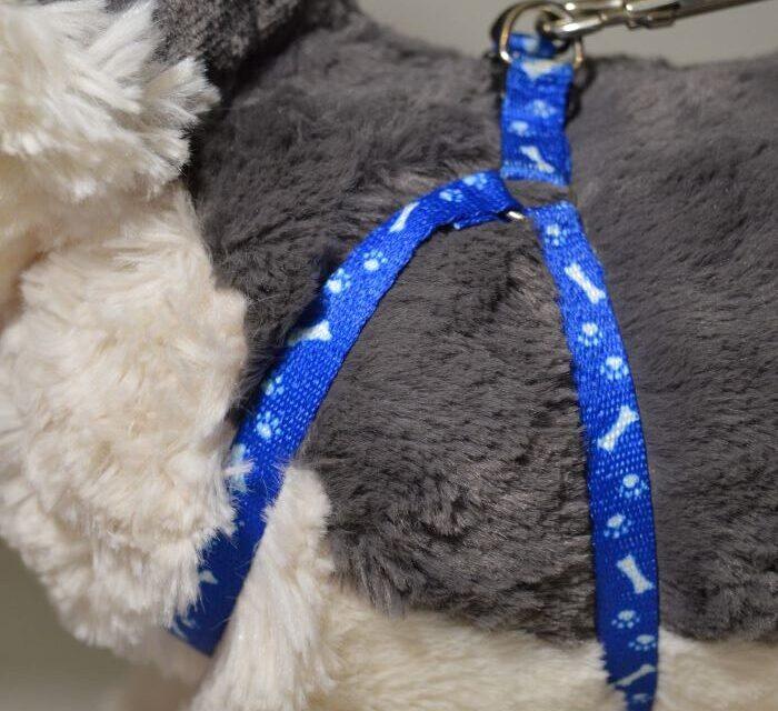 Csont mintás kék kutyahám pórázzal 1