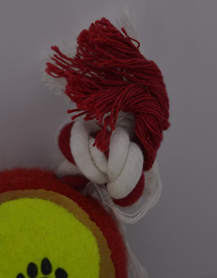 Kötél kutya játék labdával 2jatek-labdaval 3
