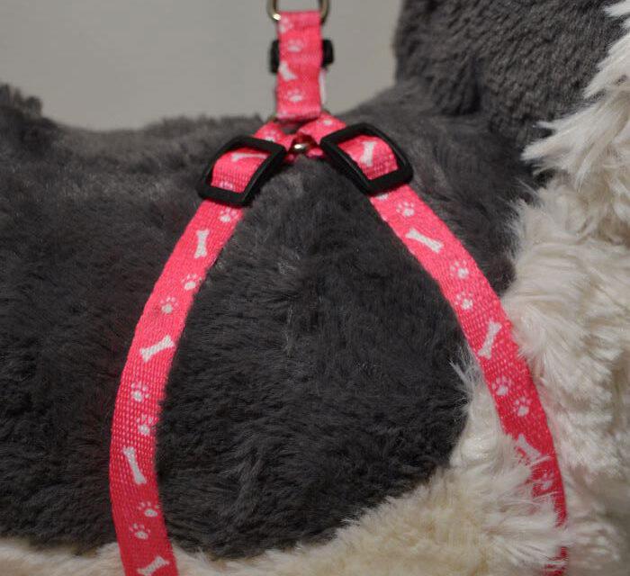 Rózsaszín csont mintás kutyahám pórázzal 1