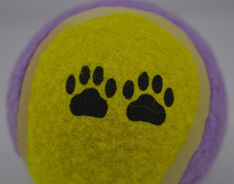 Sárga lila labda kutya játék 2