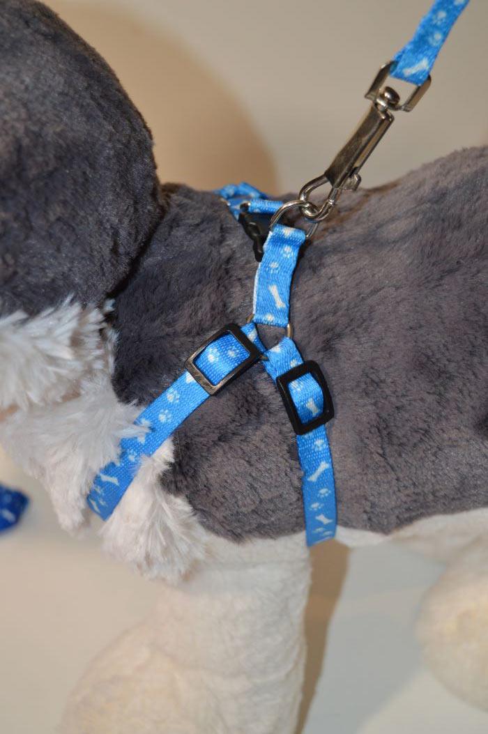 Csont mintás világoskék kutyahám pórázzal 1