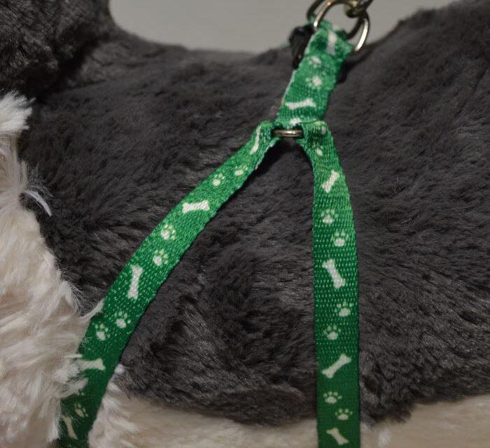 Zöld csont mintás kutyahám pórázzal 1